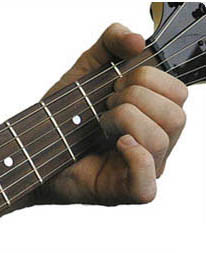 http://www.guitars.ru/02/ma/img/amajor_r1_c1.jpg